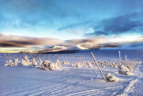 Vystup (s námi) na Sněžku 1.ledna!