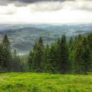 Výhled z Lysé hory na Rokytnici