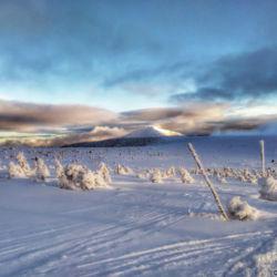 Pohled ze Štříbrného návrší na Sněžku odpoledne při návratu.