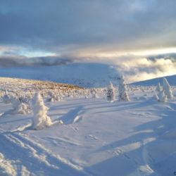 Pohled ze Stříbrného hřbetu do Údolí Bílého Labe a na Luční horu.